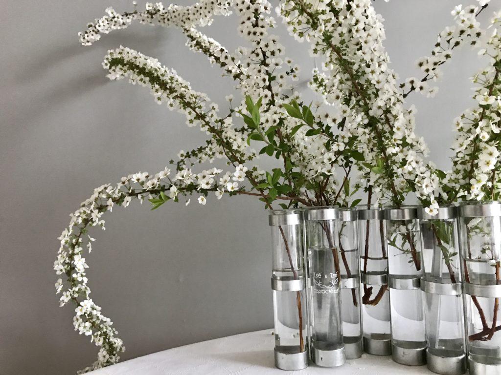 4月の花器とユキヤナギ