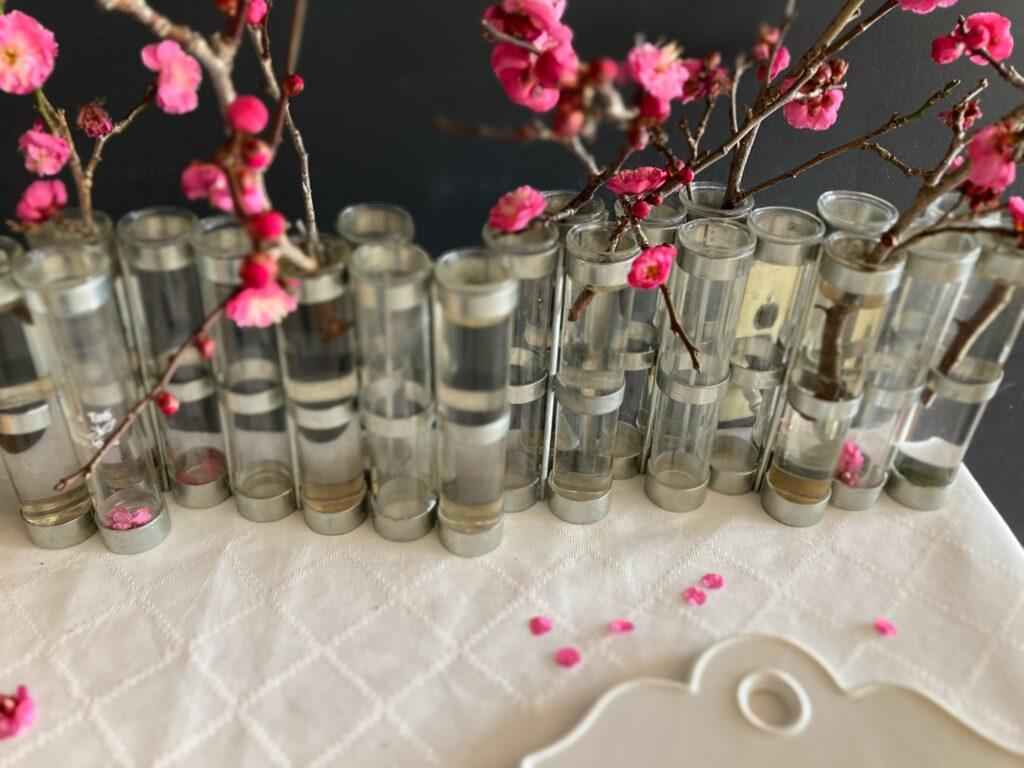 四月の花器と梅の花びら