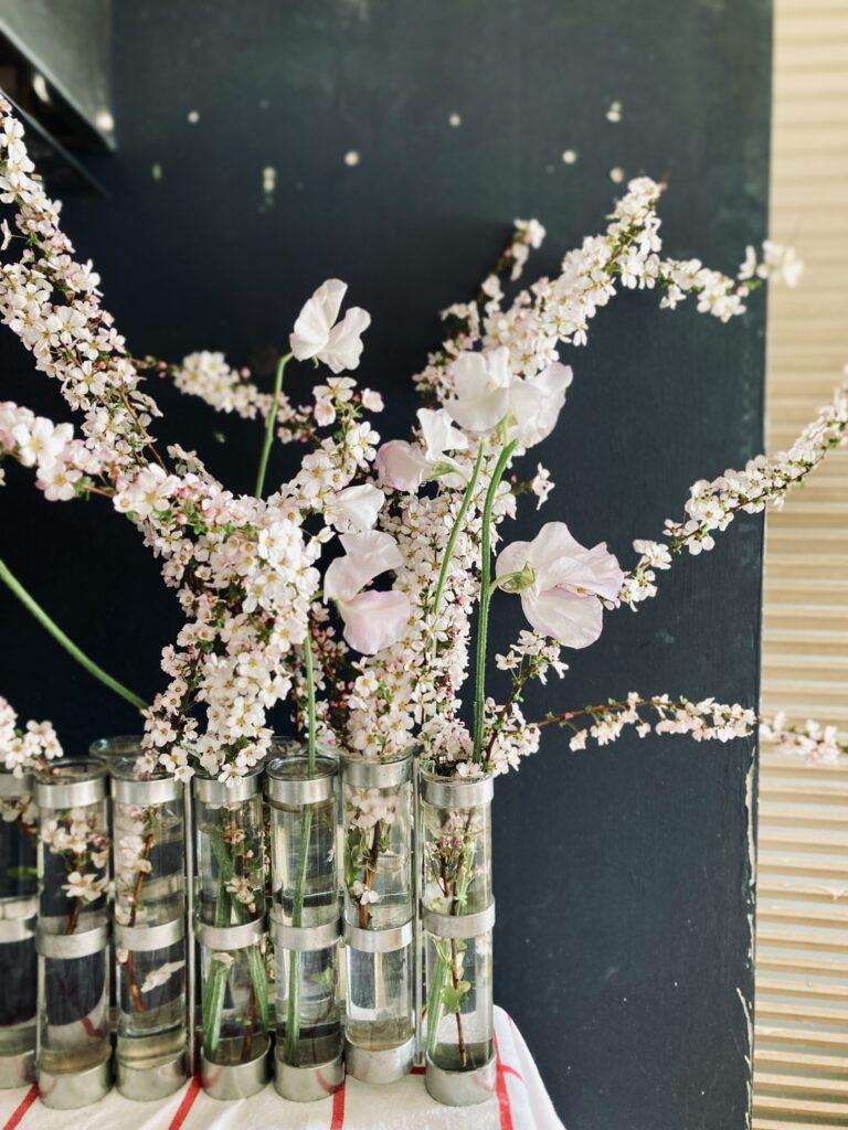 ツェツェの四月の花器に活けたスイートピーと雪柳