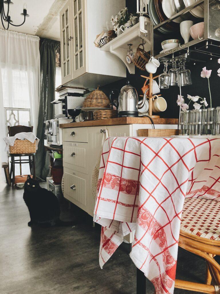 ツェツェのインディアンキッチンのあるパリ風団地のキッチン