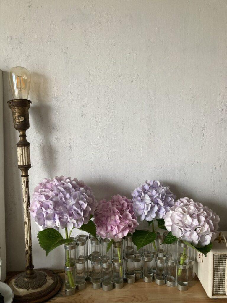 リビングダイニングのツェツェの四月の花器にいけた淡い色のあじさい